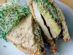 Sandwich de pollo con aguacate y…